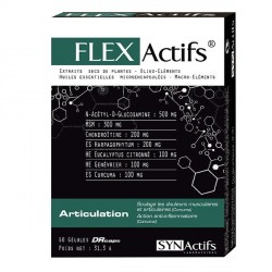 Aragan synactifs flexactifs 60 gélules